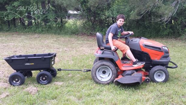 Help with Yard Work