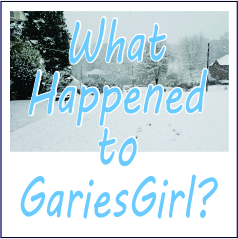What Happened to Garies Girl