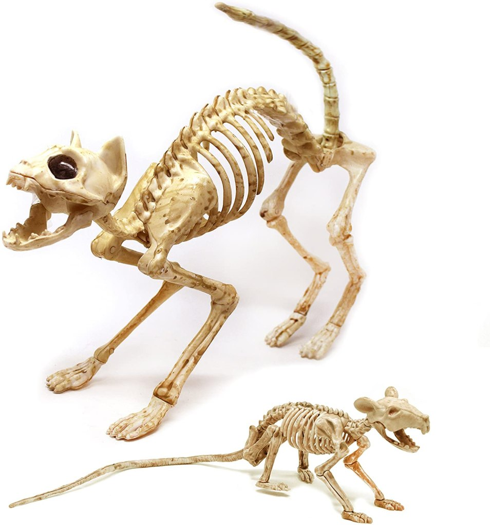Cat and Rat Skeleton - GariesGirl
