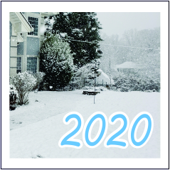 2020 - Garies Girl