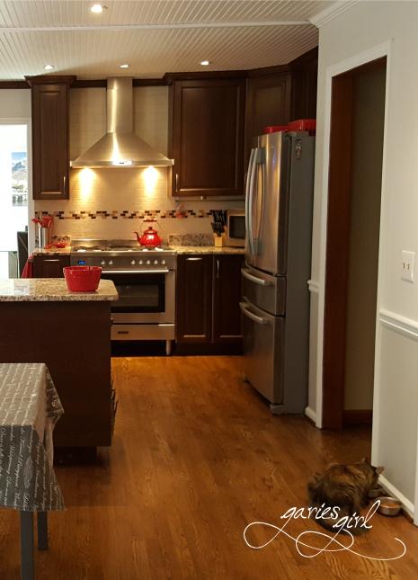 Kitchen and Fridge - Garies Girl