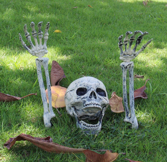 Halloween Skeleton Lawn Stakes - Garies Girl