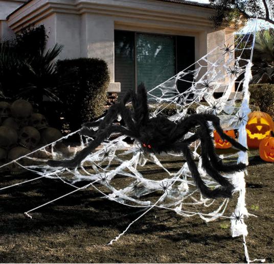Halloween Spider Web - Garies Girl
